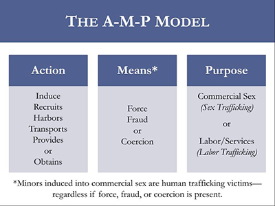 Action-Means-Purpose Model