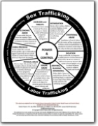 Human Trafficking Power & Control Wheel
